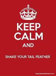 tailfeathers