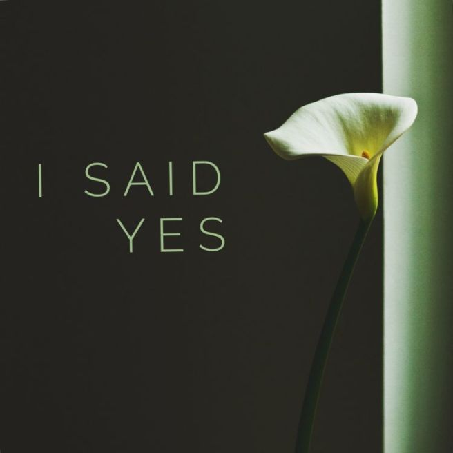 isaidyes3